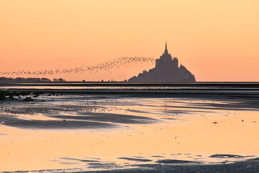 Foto van de Mont St Michel met zwerm vogels